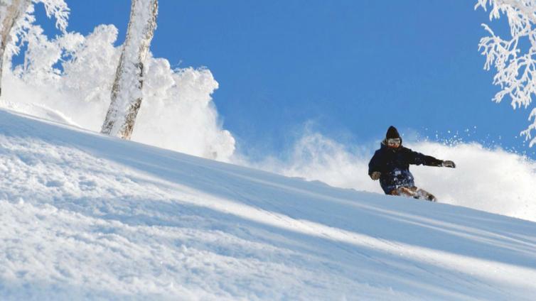 〈1Day Tour〉Ski Plan at Sapporo Teine Ski Resort / Beginner Course