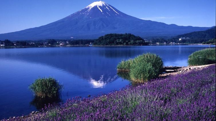 <1Day Tour>Mt. Fuji & Lake Kawaguchi & Mt. Kachi Kachi Ropeway & Picking Seasonal Fruits & Flower Watching