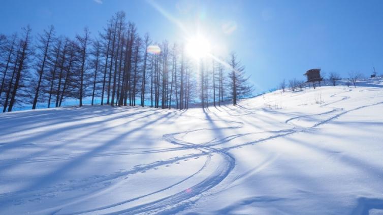 〈5Days PKG〉 Niseko Ski Package staying at Niseko and Sapporo