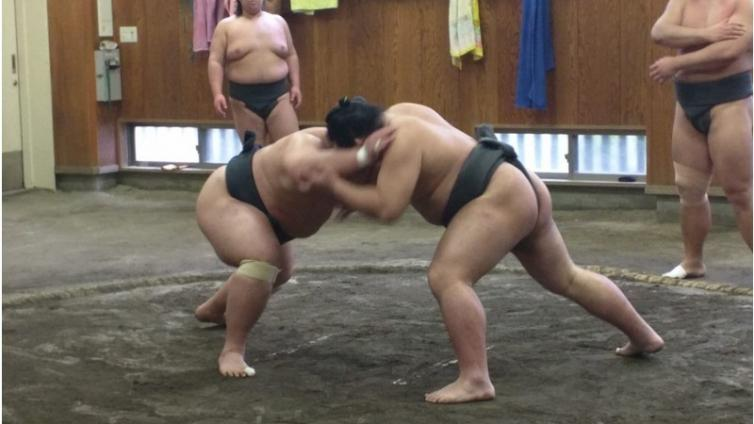 〈About 2 hours Activity〉Sumo Morning Training Watch