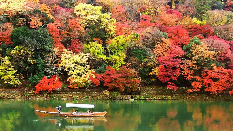 〈1Day Tour〉Enjoy autumn leaves!! Kyoto & Nara Park with lunch