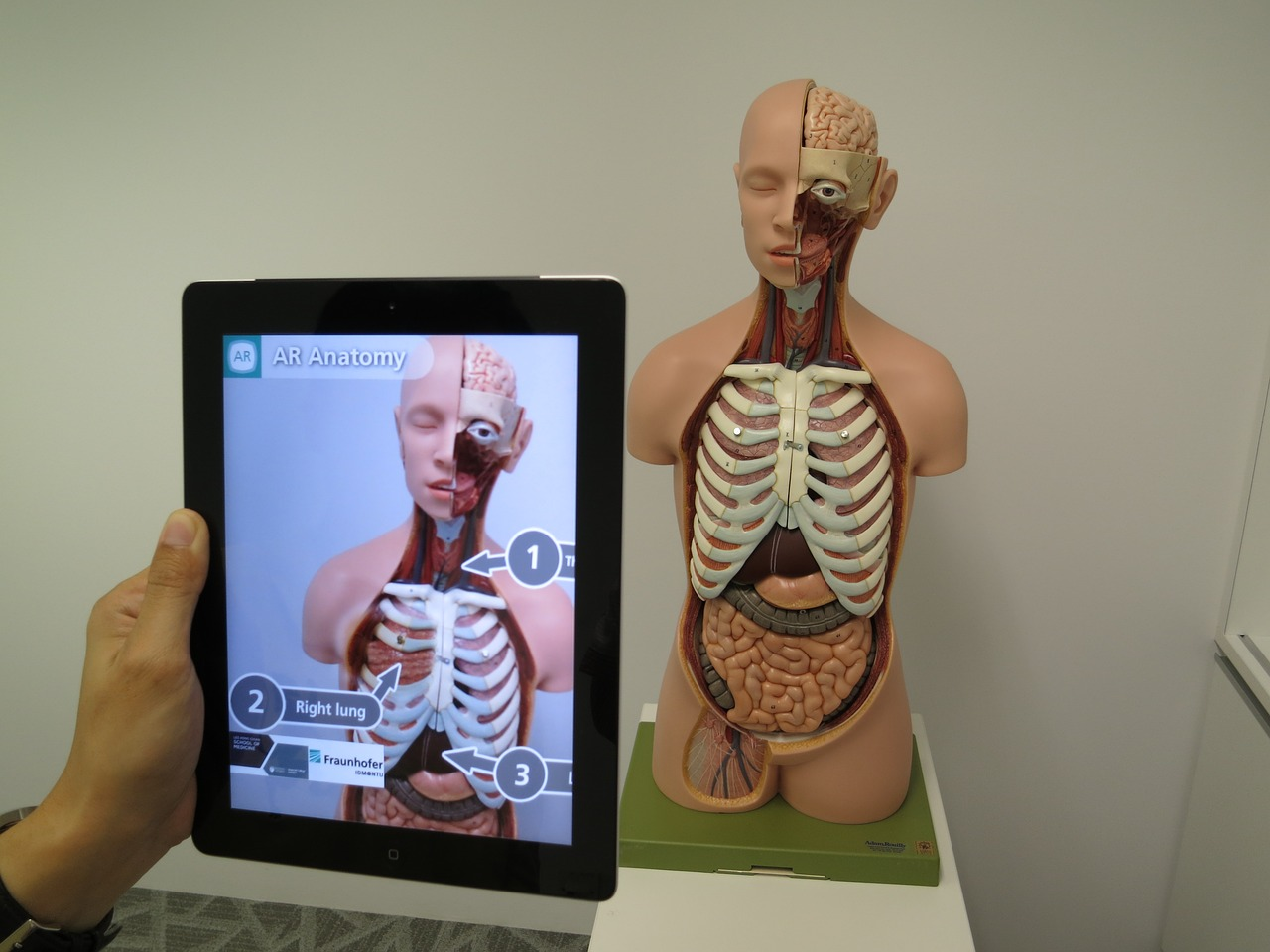 Augmented Reality - Educational Use