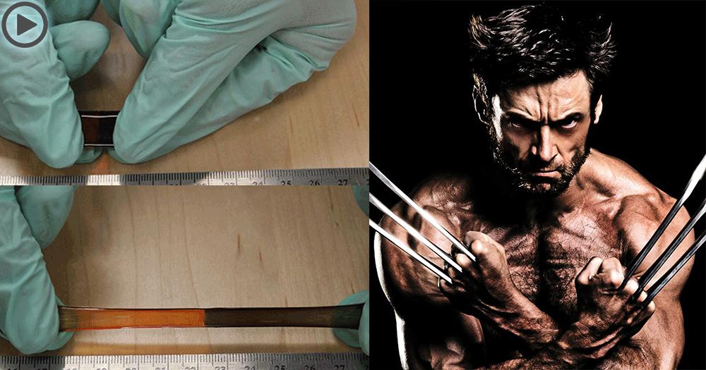 【Logan】自我修復人工肌肉,狼人自癒能力或成真