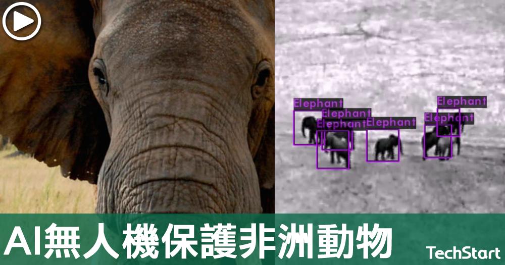 【AI救大象】美公司研AI無人機保護非洲動物,打擊偷獵活動