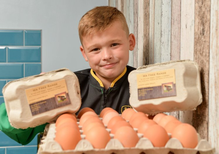 """Junior Wyatt, 8, from Tamworth in Staffordshire is a young entrepreneur who has made a 'cracking' start to his business career by starting his own egg delivery company, Mr Free Range, after watching Channel 4's How'd You Get So Rich? TV show. See NTI story NTIEGGS. One of Britain's youngest entrepreneurs earns £13,000 a year at the age of eight – from selling EGGS. Junior Wyatt flogs the eggs at a rate of £2 for six, £3.50 for 12 and £6 for 30 after collecting them from Betty's Farm shop in Derby. In the last week, he sold 750 eggs which earned him around £250 for the week and with the customer numbers on the rise, he could reach figures of £13,000 a year. The young entrepreneur from Tamworth, Staffs., delivers the eggs around the town which his mum, Georgina, has helped him with by setting up a Facebook page. Junior, who calls his business """"Mr Free Rangeâ€, took the idea of an egg distribution service from the Channel 4 programme """"How'd You Get So Rich†– where a successful entrepreneur got his break selling eggs. The young businessman, who started his egg delivery service with only £10, said: """"It has been so exciting earning my own money and meeting lots of new people.â€"""