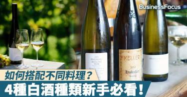【品味人生】如何搭配不同料理?4種白酒種類新手必看!