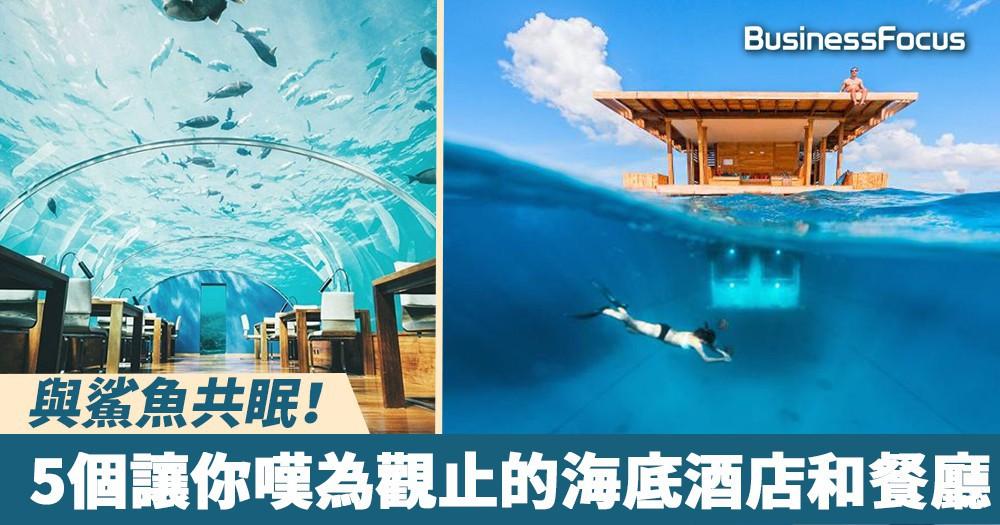 【頂級享受】與鯊魚共眠!5個讓你嘆為觀止的海底酒店和餐廳