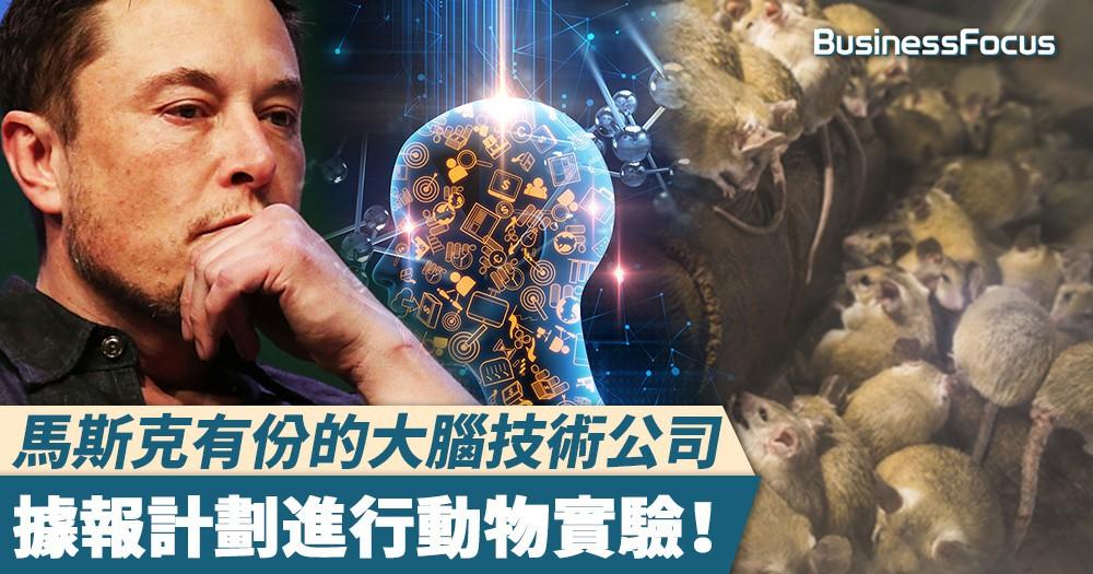 【人機合一】馬斯克有份的大腦技術公司,據報計劃進行動物實驗