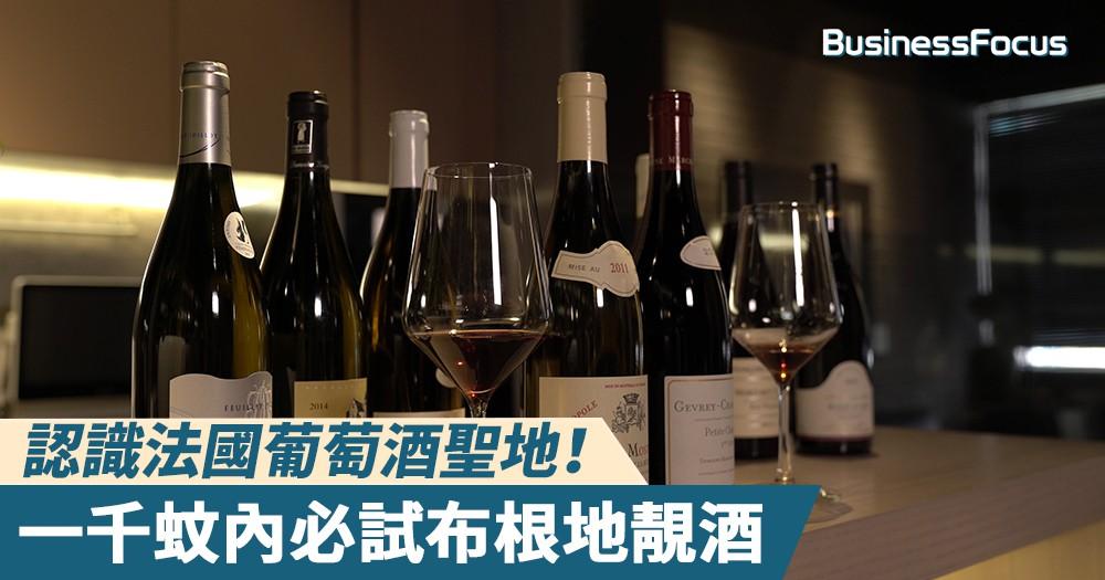 【專家教路】認識法國葡萄酒聖地!一千蚊內必試布根地靚酒