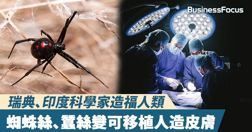 【造福人類】瑞典、印度科學家以蜘蛛絲、蠶絲製成人造皮膚,或可用於移植手術
