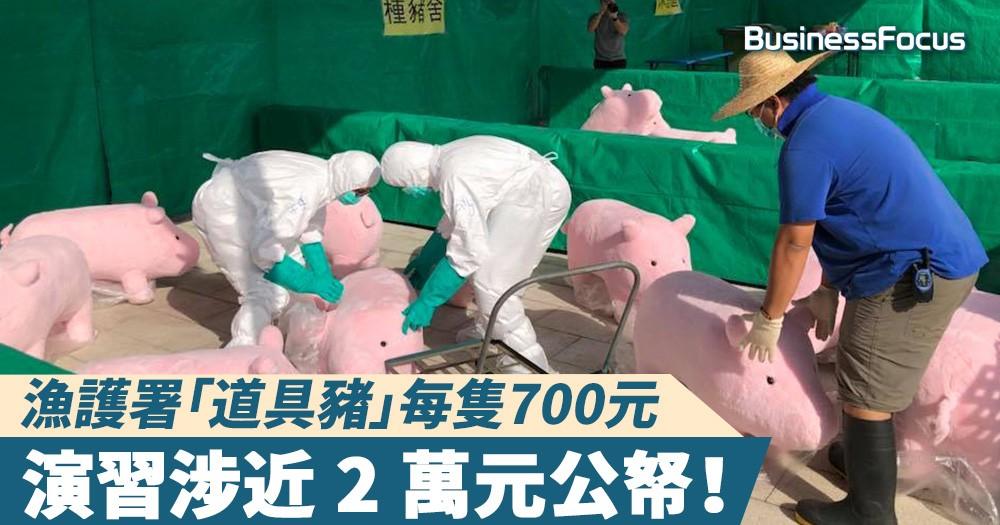 【非洲豬瘟】漁護署「道具豬」每隻700元,演習涉近 2 萬元公帑!