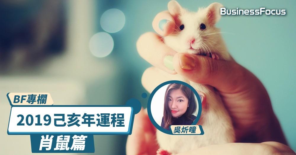 【BF專欄】炘曈暢談己亥年運程:肖鼠篇