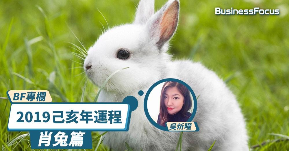 【BF專欄】炘曈暢談己亥年運程-肖兔篇