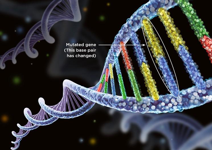 【真人版X-Men】基因變異女子天生無痛感,傷口可以快速癒合!