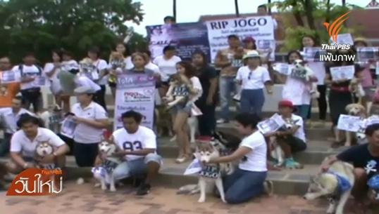 กลุ่มคนเลี้ยงสุนัขไซบีเรียน ฮัสกี้ ทวงถามความคืบหน้าคดีทำร้าย