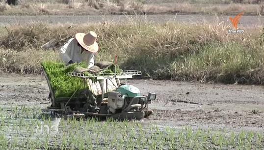ส.ป.ก.ยกเว้นค่าเช่าที่ดิน-ลดดอกเบี้ยช่วยภัยแล้ง
