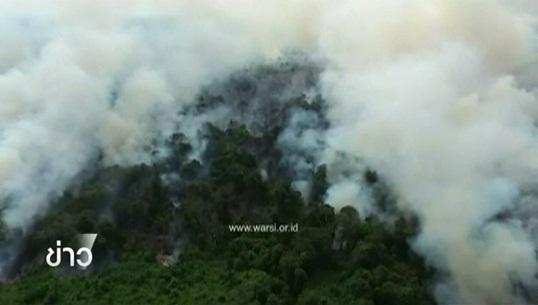 นาซาประเมินไฟป่าอินโดฯปีนี้เลวร้ายสุดในรอบ 15 ปี กระทบหลายจังหวัดภาคใต้ของไทย