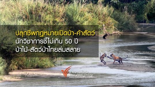 ปลุกชีพกฎหมายเปิดป่า – ค้าสัตว์  นักวิชาการชี้ไม่เกิน 50 ปีป่าไม้-สัตว์ป่าไทยล่มสลาย