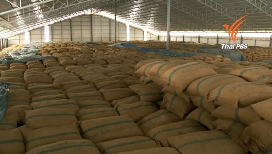 รมว.เกษตรฯ ชี้ข้าวไทยเสี่ยงต่อการแข่งขันในเวทีโลก มุ่งปรับนโยบายข้าวเน้นเกษตรกรมากกว่านโยบายราคา