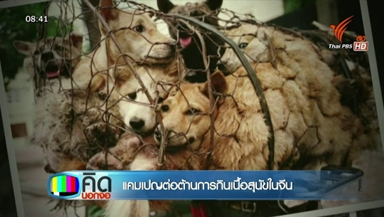 ชาวเน็ตกว่าล้านคนต้านเทศกาลกินหมาในจีน