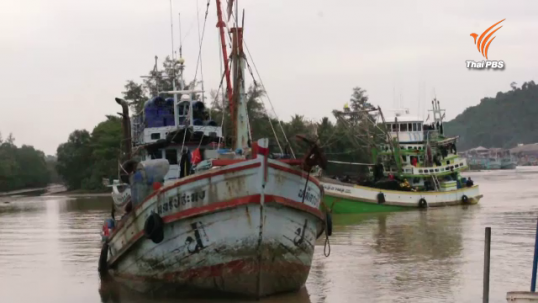 'ประมงพาณิชย์สงขลา-ชุมพร'ฮึ่มหยุดจับปลา จี้รัฐผ่อนผันนิรโทษ-ขึ้นทะเบียนอาชญาบัตร