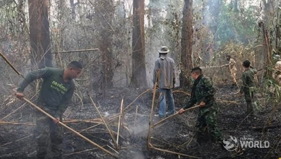 Army employs thousands of troops to fight forest fires in
