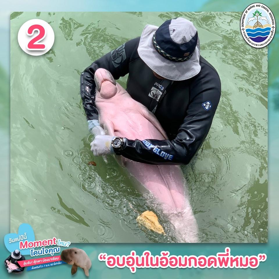 General – Thai PBS World