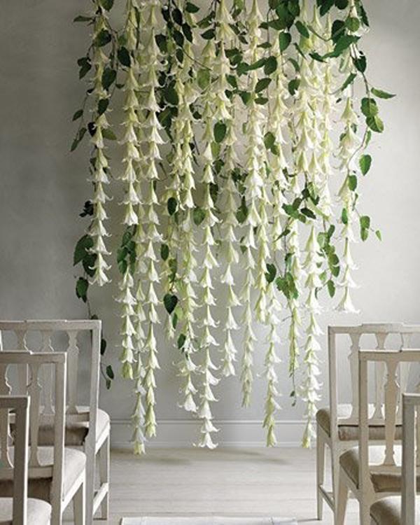 floral-backdrop.jpg