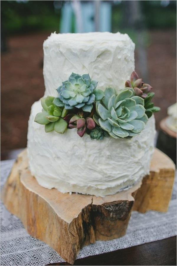 succulent_cake.jpg