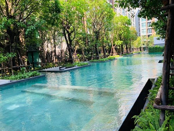 Vtara 36 Pool