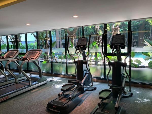 Vtara 36 Gym