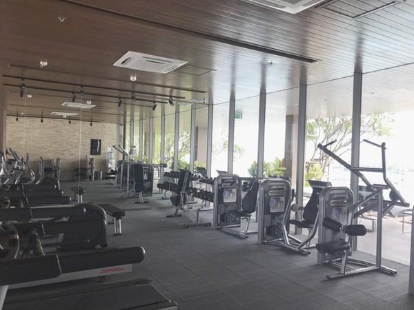 Lofts Ekamai Gym
