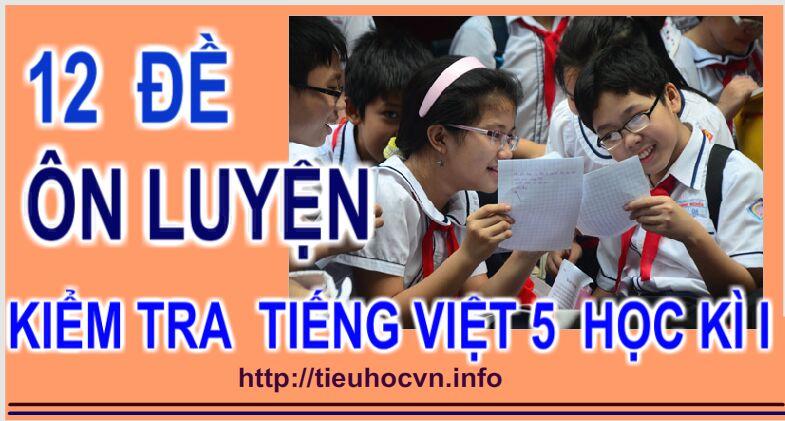 12 Đề  Ôn luyện Tiếng Việt 5 Học kì 1 năm 2018