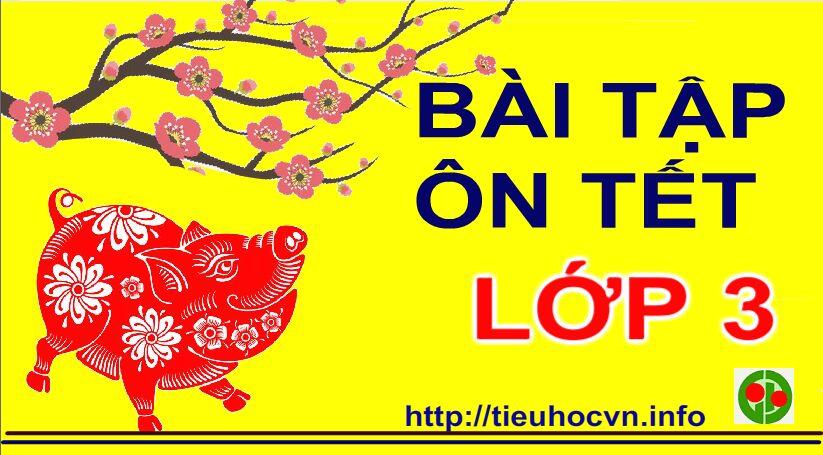 Bai-tap-On-luyen-Tet-Toan-Tieng-Viet-Lop-3-tieuhoc