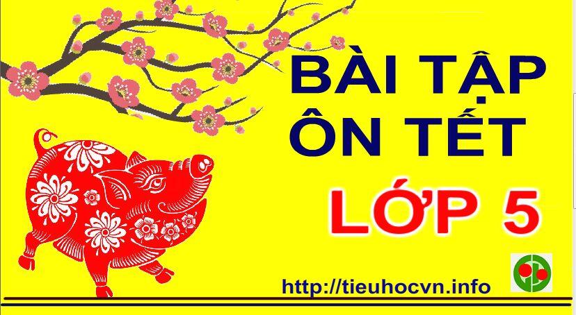 Bai-tap-On-luyen-Tet-Toan-Tieng-Viet-Lop-5-tieuhoc