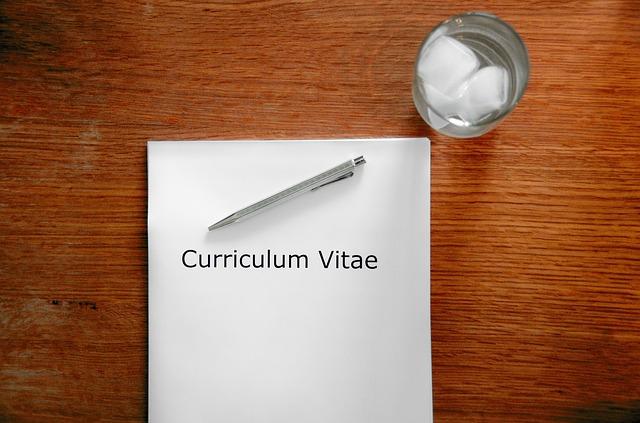 CV summary
