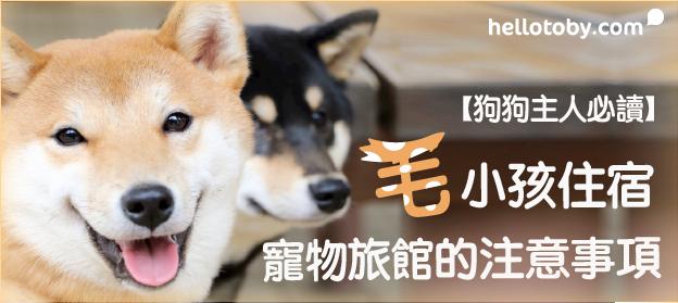 【狗狗主人必讀】毛小孩住宿 寵物旅館 的注意事項