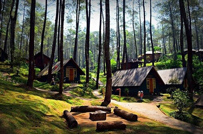 pondok wisata alam rumah hobbit grafika cikole