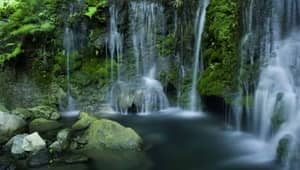 Waterfalls near Chennai