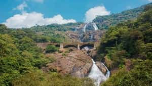 Dudhsagar Waterfalls near Goa