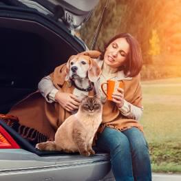 Pet Travel Assurance