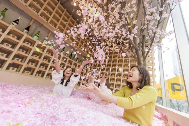 1.2 million replica sakura petals