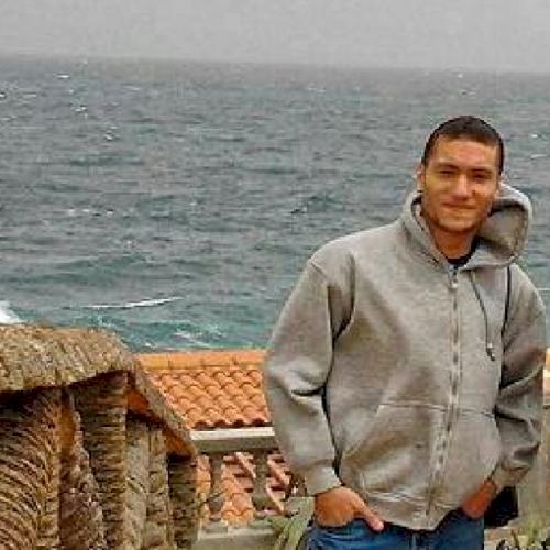 Ahmed - Abu Dhabi: I am an English to Arabic translator and li...