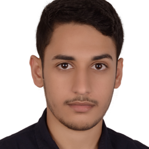 Hamza - Abu Dhabi: I have worked as a peer tutor at my univers...