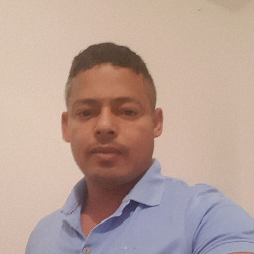 Naceur - Brisbane: I am multilingual with huge experience in t...