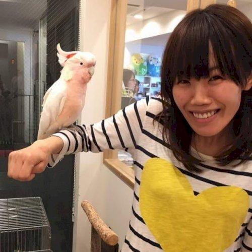 Yayoi - Adelaide: I am Yayoi from Japan, currently doing maste...