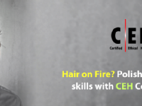 Certified Ethical Hacker C|EH training and certification in Bangalore