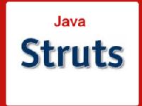 Practical workshop on Struts 2 on 31-8-13