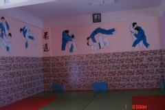 Become a Judo Champion and Black Belt