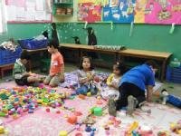 Online Pre & Primary Teachers Trainning